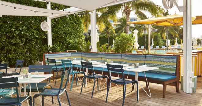 miami visiting as a vegan lido the standard hotel