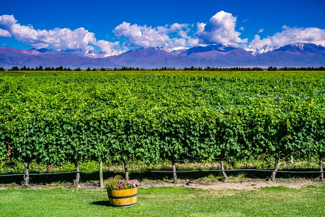 50 Destinations Worldwide to See This Summer Mendoza